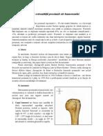 09.Fracturile extremităţii proximale ale humerusului (1).doc