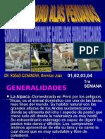 Capacidad I- Sanidad y Produccion de Camelidos Sudamericanos
