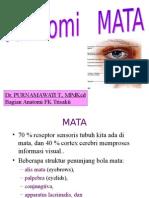 Anatomi bola Mata