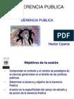 Gerencia_Publica2011_HOYARCE.pdf