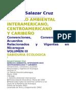 Derecho Ambiental Edward Salazar Cruz