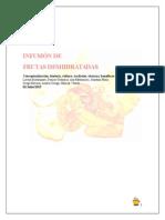 Infusion de Frutas Deshidratadas