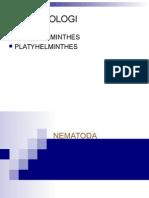 K1 - NEMATODA