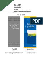 Metodos de Analizar Celulas
