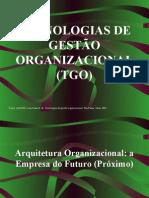 03- Arquitetura Organizacional a Empresa do Futuro_Próximo