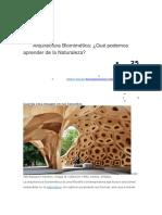 Arquitectura Biomimética