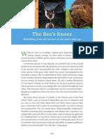 The Bee's Knees