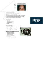 Traumatismo Ocular (Clase Teórica)