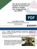 presentacion_sunat_ppt_ley_29972.pptx