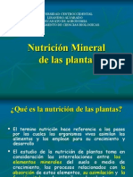 9.- nutricic3b3n-mineral.ppt