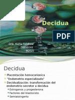 20110402_decidua