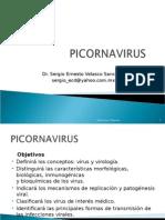 Tema 54 Picornavirus