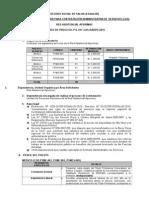 BA-017-CAS-RAAPU-2015 (1).docx