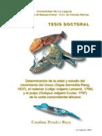 PhD Thesis Catalina Perales-Raya 2001