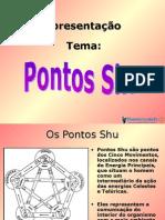 Pontos+Shu acupuntura