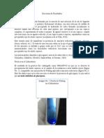 Discusión de Resultados Prueba de Fehling y Test de Molisch