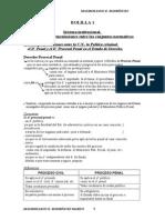 Resumen de Procesal Penal - Cat Chiara Diaz - Año 2012