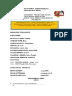 """Grupo Polivalente """"José Carlos Mariátegui"""" Proyecto"""