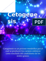 cetogenesis (1)