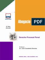 Derecho Procesal Penal Guia Deleg
