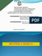 Mini-curso Biofisica Dilson - Francisco - Yasmin