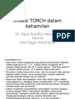 Infeksi TORCH Dalam Kehamilan
