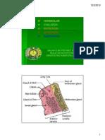 K7 Hordeolum Chalazion Entropion Ectropion Blepharitis