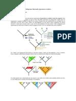 cladogramas
