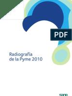 Radiografia de La Pyme 2010