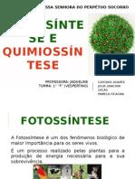 Fotossíntese e Quimiossíntese