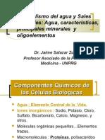 Metabolismo Del Agua y Sales Minerales[1].JAIME SALAZAR Z