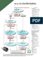 Guias y Protocolos Copia