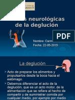 Bases Neurológicas de La Deglución