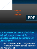 Mitose+ Meiose.ppt