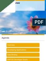 SAP Fiori - SAPUI5 Overview