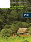 Coletivos Guarani No RS