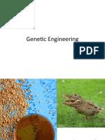 Genetic Engineering -- Digital Portfolio SGP