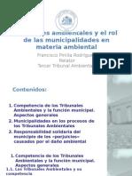 Taller Tribunales Ambientales y Municipalidades 2015
