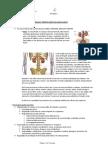Urologia - Resumo Completo