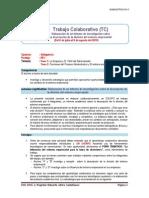 Guía de Trabajo Colaborativo_2