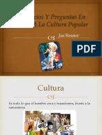 Prejuicios y Preguntas Entorno a Una Cultura Popular