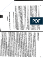 Cap 1 Psi Desarrollo M Moraleda.pdf