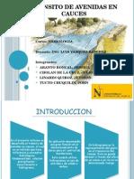 Transito de Avenidas en Causes - Hidrologia