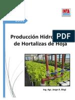 INTA Producci%C3%B3n Hidrop%C3%B3nica de Hortalizas de Hojas