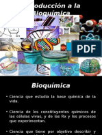 Introduccion a La Bioquimica