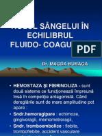 ECHILIBRUL FLUIDO- COAGULANT CURS FIZIOLOGIE
