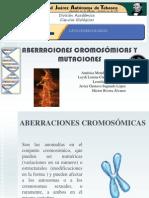 aberracionescromosomicasymutacionesccromosomicas-110407093526-phpapp02