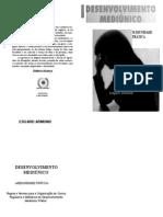 Edgard Armond - Desenvolvimento Mediúnico