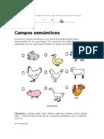 Explicacion Campos Semanticos