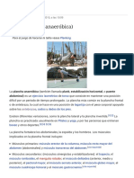 Plank (Plancha Anaeróbica) - WikipediaLa Enciclopedia Libre